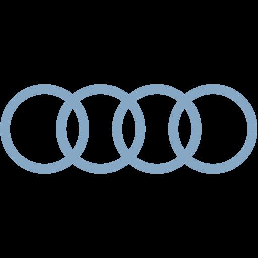 Inwerken Kundinnen und Kunden: Audi