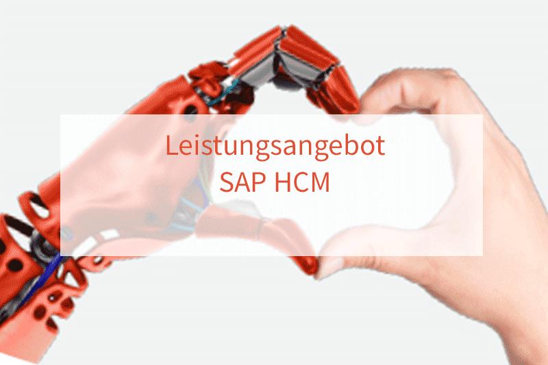 SAP HCM Angebot