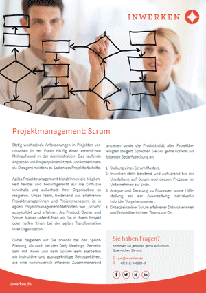 Scrum agiles Projektmanagement Flyer