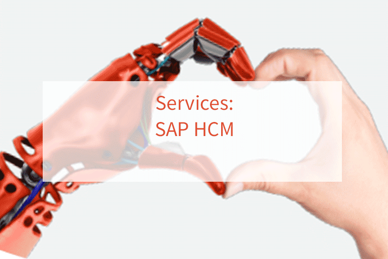 SAP HCM Offer