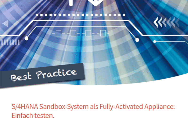Best Practice SAP Sandbox System